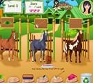 Nouveau jeu de cheval
