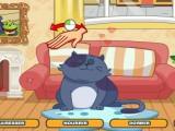 Chat et muffins magiques