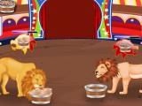 Lions de cirque