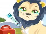 Soin d'un lion