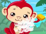 Soin de mon singe