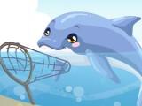 Soin d'un dauphin