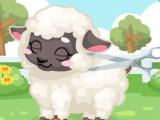 Soin d'un agneau