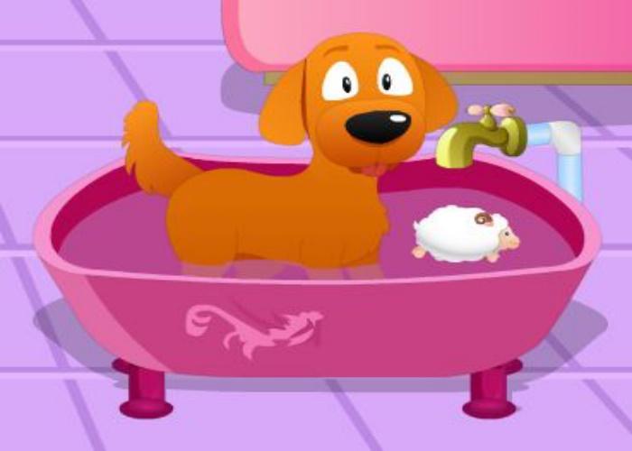 Lave le chien !