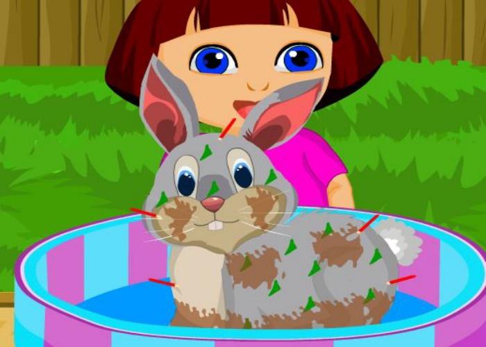 Dora soigne un lapin