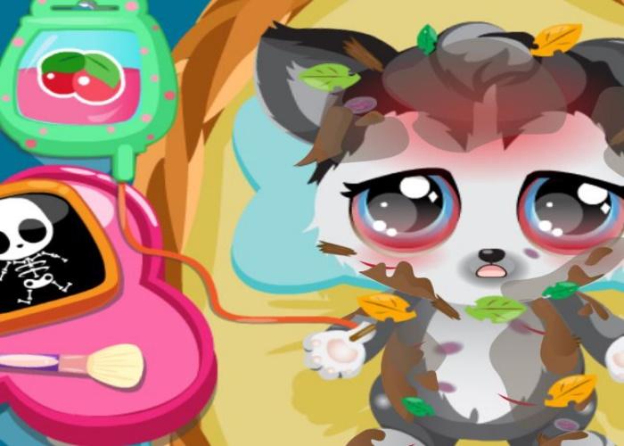 Chaton bless sur jeux fille gratuit - Jeux de petit chaton gratuit ...