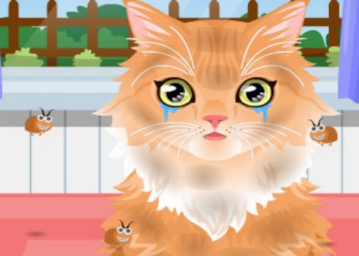 Fabulous chaton puces with jeux de fille animaux gratuit - Jeux de salon de toilettage pour animaux gratuit ...