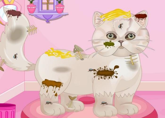 Affordable chat persan with jeux de fille animaux gratuit - Jeux de salon de toilettage pour animaux gratuit ...