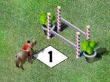 Equitation avec un cheval