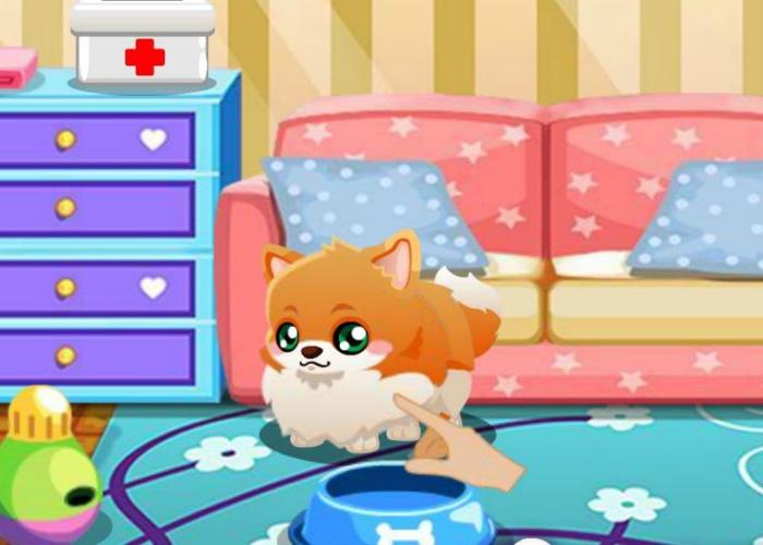 Chaton la maison sur jeux fille gratuit - Jeux de petit chaton gratuit ...