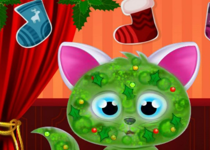 Chat en beauté pour Noel