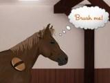 Jeux de chevaux