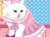 Joli chat à habiller